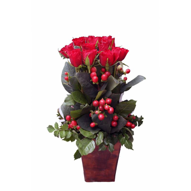 Linear Composition With 12 Red Roses  - 1