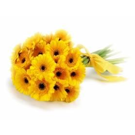 Yellow Gerberas  - 1